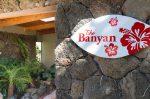 バニヤンツリーとジンジャーの木のある家
