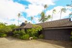 青い海と椰子の木のある家 外観