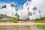 青い海と椰子の木のある家 海側からの外観